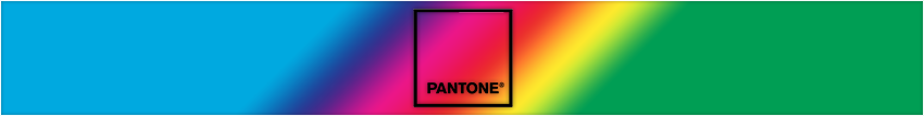 pantone color shoes - jackson universal